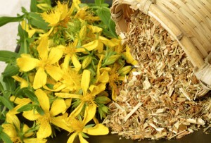 st johns wort side effects